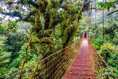 Hotelangebote in Monteverde