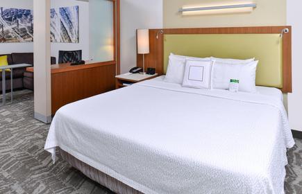 SpringHill Suites by Marriott Detroit Metro Airport Romulus