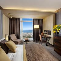 The Dan Carmel Hotel Executive Bay view