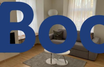 Neue renovierte 3 1/2 Zimmerwohnung bis zu 8 Gäste