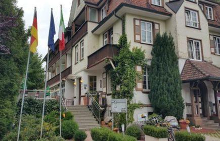 Hotel & Restaurant Il David