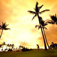 Wailea Beach Resort - Marriott Maui Golf course