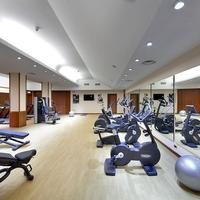 Exe Majestic Fitness Studio