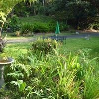 A Beautiful Edge of the World B&B Front Garden