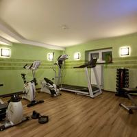 Hotel Schiller Fitnessraum