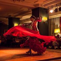 Hotel Fuerte Marbella Theater Show