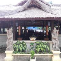Bali Lovina Beach Cottages Exterior