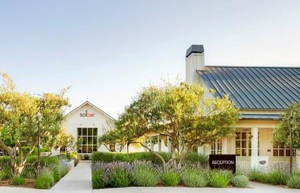 Solage, Auberge Resorts Collection Napa Valley