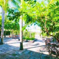 Hotel Biba BBQ/Picnic Area