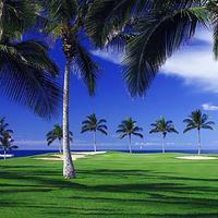 Waikoloa Beach Marriott Resort and Spa Golf course