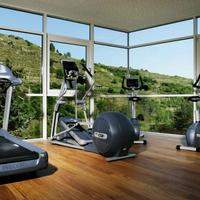 Steigenberger Hotel and Spa Krems Fitness and Wellness