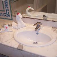 Royal Garden Palace Bathroom
