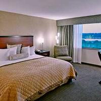 Wyndham Garden Hotel Philadelphia Airport King Room at Wyndham Garden Hotel Philadelphi