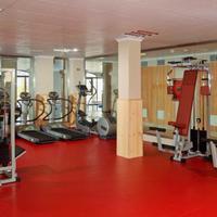 SH Villa Gadea Fitness Facility