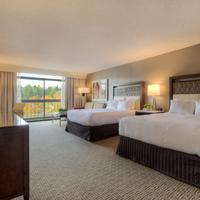 Hilton Bellevue Guestroom