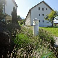 Hotel Meierhof Property Grounds