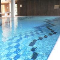 Ringhotel Adler Indoor Pool